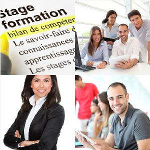 Formation Lotus Note Pontoise